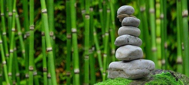 Bambus, ki poskrbi za vašo srečo